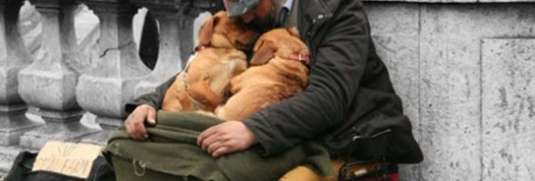 These-homeless-men-would-not-be-alive-if-it-weren't-for-these-sweet-little-puppies.-Seeing-these-photos-taken-on-the-streets-has-blown-me-away.-7-450x299