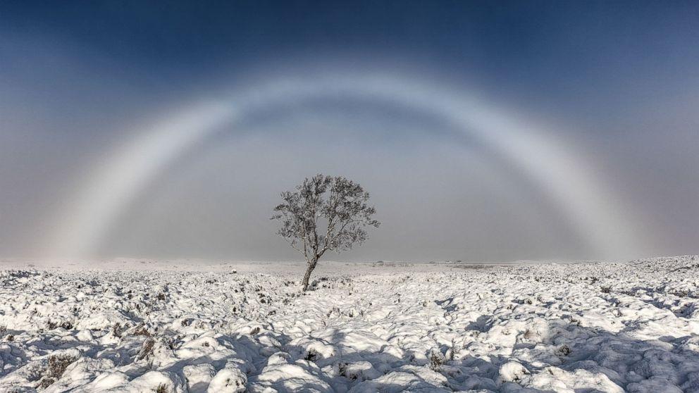 REX-fog-er-161123_16x9_992