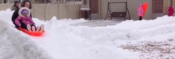 backyard-luge