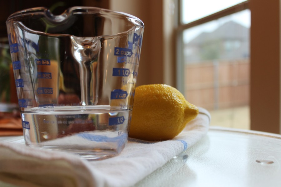 lemon_micro-e1426264581142