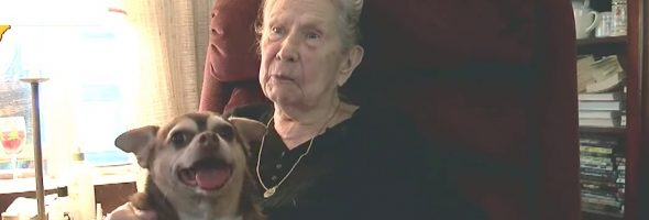 rescue-dog-92-year-old